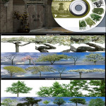 3D Total Textures V10 R2 Trees & Plants