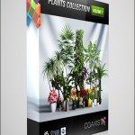 CGAxis Models Volume 1 Plants