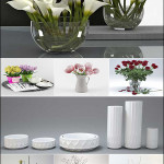 Vase and Flower Collection