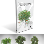 XfrogPlants FRUIT TREES