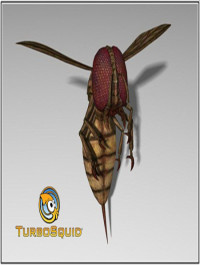 TurboSquid Monstrous Blood Wasp