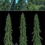 R&D Group iTrees vol 4 Fir Trees
