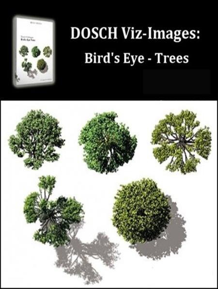 Dosch Design 2d Viz Images Bird S Eye Trees