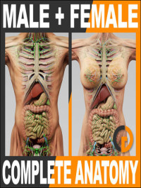 TurboSquid Human Male and Female Complete Anatomy For C4D