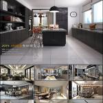 Modern Kitchen & Restaurant Style 3D66 Interior 2015 vol 1