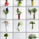 3D Models Table Vases Flower Collection