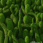 HD Trees vol. 3 for Cinema4D