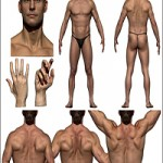Anatomy360 Neutral Heads Pack 01