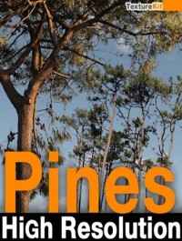 TextureKit Pines High Resolution