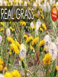 VIZPARK Real Grass for Cinema4D, Modo OBJ, FBX & LightWave