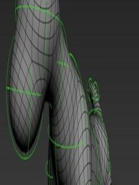 Form for 3ds Max 2011-12