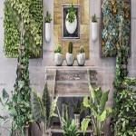 Modern Monstera Dripping Water Wall Potted Plant Collection