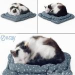 Best 3D Models of the Week Fluffy cat