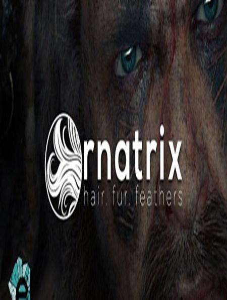 Ephere Ornatrix V 6 0 12 For 3Ds Max 2015-2019