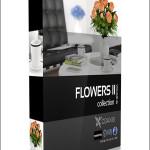CGAxis Models Volume 26 Flowers II