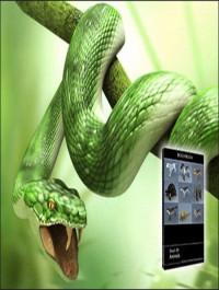 DOSCH DESIGN 3D Animals