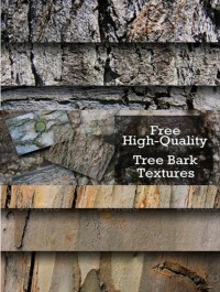 Tree Bark Textures 20 Set 1
