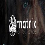 Ephere Ornatrix V.6.0.12 For 3Ds Max 2015-2019