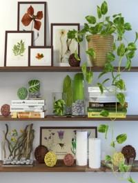 Decor shelves
