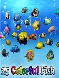 Colorful Sea Fish Pack