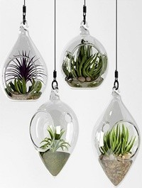 Hanging bowl vase 4