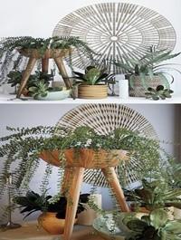 Plant decor set 1