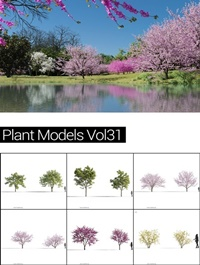 MAXTREE Plant Models Vol 31