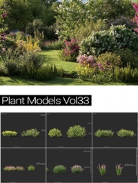 MAXTREE Plant Models Vol 33