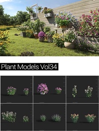MAXTREE Plant Models Vol 34