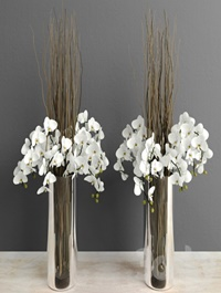 Orchids with willow branches