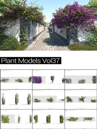 MAXTREE Plant Models Vol 37