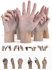 ULTIMATE FEMALE HAND PACK
