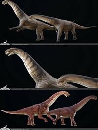 Camarasaurus 3D model