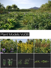 MAXTREE Plant Models Vol 38