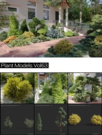 MAXTREE Plant Models Vol 63