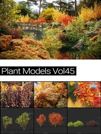 MAXTREE Plant Models Vol 45