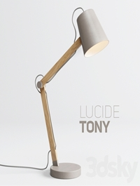 Table lamp LUCIDE TONY