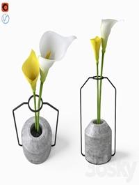 Calla in Weight Vases by Decha Archjananu Callas