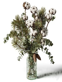 Bouquet of eucalyptus, pine and cotton in a glass vase