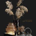 Decorative set with dry plants 3