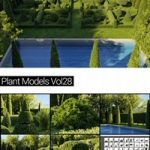 Maxtree Plant Models Vol. 28