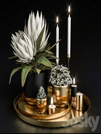 Decorative set with plants in pots