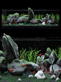 Aquarium with Fishes 3D Model for 3ds Max