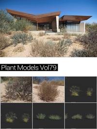 MAXTREE Plant Models Vol 79