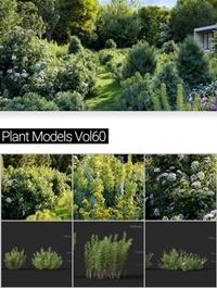 MAXTREE Plant Models Vol 60