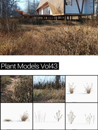 MAXTREE Plant Models Vol 43