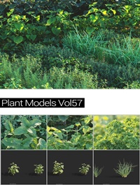 MAXTREE Plant Models Vol 57