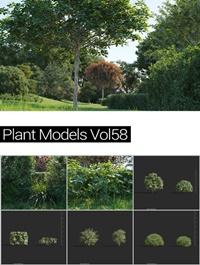 MAXTREE Plant Models Vol 58