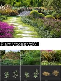 MAXTREE Plant Models Vol 61