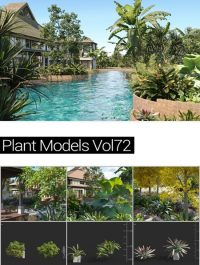 MAXTREE Plant Models Vol 72